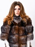 Woman makeup and hairstyle posing mink or sable fur coat. Fur fashion concept. Winter elite luxury clothes. Female brown stock photo