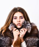 Woman makeup and hairstyle posing mink or sable fur coat. Winter elite luxury clothes. Female brown fur coat. Fur store stock images
