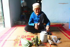 Woman making betel with betel and areca Royalty Free Stock Images