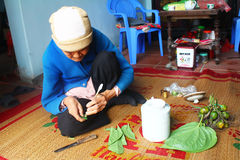 Woman making betel with betel and areca Stock Photos