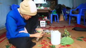 Woman making betel with betel and areca Royalty Free Stock Photos