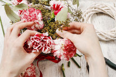 Woman making bouquet of red and white carnation flowers Stock Photos