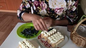 A woman is making a cake. Layers of savoiardi cookies and cream layers. Decorated with blueberries