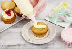 Woman making cupcakes Stock Images