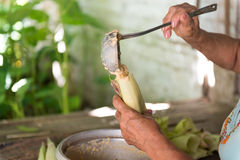Woman making tamales in Cuba Royalty Free Stock Photography