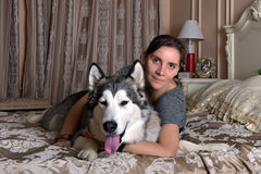 Woman with malamute. Lying on the couch at home Royalty Free Stock Photo