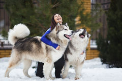 Woman with malamutes Royalty Free Stock Photos