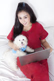 Woman and maltese dog using laptop. Portrait of beautiful woman and maltese dog lying on the bed while using laptop stock images