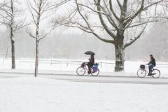A woman and man biking in a snowy Vondelpark. Royalty Free Stock Image