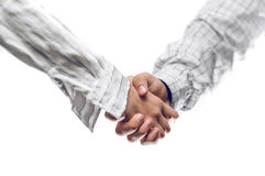 Woman And Man Business Handshake Stock Image