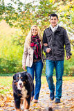 Woman and man with dog having autumn walk. Woman and men with dog having autumn walk on a path covered with foliage Royalty Free Stock Photo