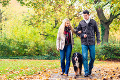Woman and man with dog having autumn walk. Woman and men with dog having autumn walk on a path covered with foliage Stock Images