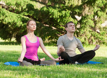 Woman and man doing yoga exercise Royalty Free Stock Images