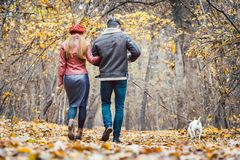 Woman and man in the fall strolling with their dog in the park royalty free stock photo