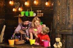 Woman, man and little boy child love nature. happy gardeners with spring flowers. Family day. Greenhouse. Father and son. Woman, men and little boy child love royalty free stock image