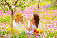 Woman and man on picnic Royalty Free Stock Photo