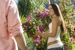 Woman With Man Selecting Potted Plant Stock Photos