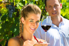Woman and man sitting under grapevine and drinking Royalty Free Stock Photo