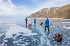 Woman and a man with a sledge and trekking pole is ice of Baikal Royalty Free Stock Photo