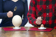 Woman and man with spoons eating hen and ostrich eggs Royalty Free Stock Image