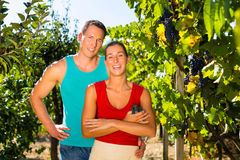Woman and man standing in vineyard Royalty Free Stock Image