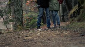 Woman And Man Are Walking Through Autumn Forest. Loving Couple - Young Woman And Man Are Walking Through A Beautiful Autumn Forest Talking About Something That stock video footage