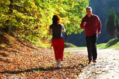 Woman and man walking cross country trail in autumn forest Stock Photography