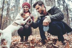 Woman and man walking their dog throwing a stick stock photos