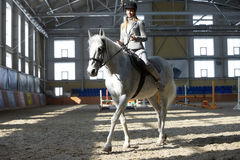 Woman in manege Royalty Free Stock Photo