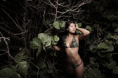 Woman by the mangroves at the beach stock images