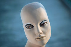Woman mannequin Royalty Free Stock Photos