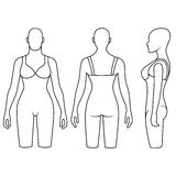 Woman mannequin slimming underwear torso Royalty Free Stock Image