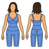 Woman mannequin slimming underwear torso Stock Photo
