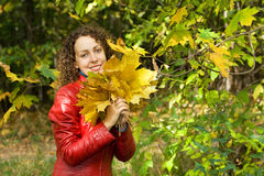 Woman with maple leaves in hands in wood in autumn Royalty Free Stock Photography