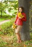 Woman with maple leaves in hands in wood in autumn. Young woman with maple leaves in hands near tree in wood in autumn stock photos