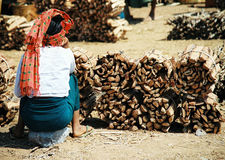 Woman on market. With teak wood in Burma royalty free stock images