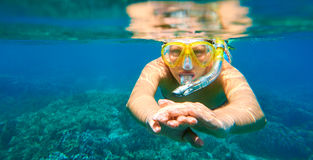 Woman with mask snorkeling in clear tropical water Royalty Free Stock Photo