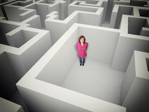 Woman and maze Stock Images
