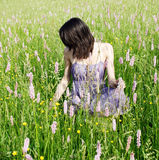 Woman in the meadow. Young woman in the meadow Royalty Free Stock Image
