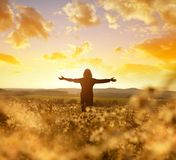 Woman on the meadow with blooming daisies at sunset. stock images
