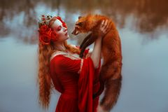 Woman in medieval clothes with a fox. A young woman in medieval red dress with a fox stock photos