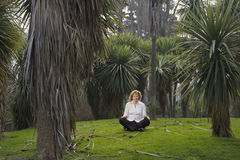 Woman meditaing amongst cabbage trees Royalty Free Stock Image