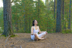 Woman meditate in forest Stock Images