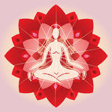 Woman Meditating on Lotus Flower Background Royalty Free Stock Images
