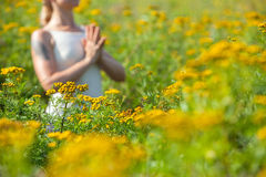 Woman meditating in meadow of yellow flowers Royalty Free Stock Photography