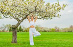 Woman meditating in yoga vrksasana tree pose at the park royalty free stock images