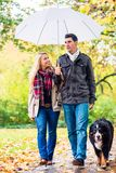 Woman and man having walk with dog in autumn rain. Woman and men having walk with dog in autumn or fall rain stock photos