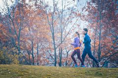 Woman and man jogging or running in park during autumn. Woman and men jogging or running in park during autumn on a hill royalty free stock photography