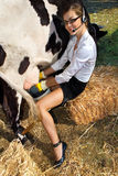 Woman milking cow Stock Photo