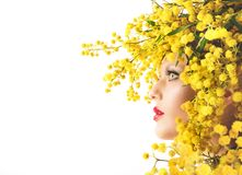 Woman mimosa beauty Stock Images
